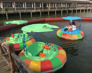Motorized Bumper Boats for Sale